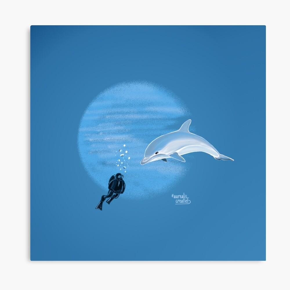 Dolfijn-duiker-storytelling-aurealisCreatief
