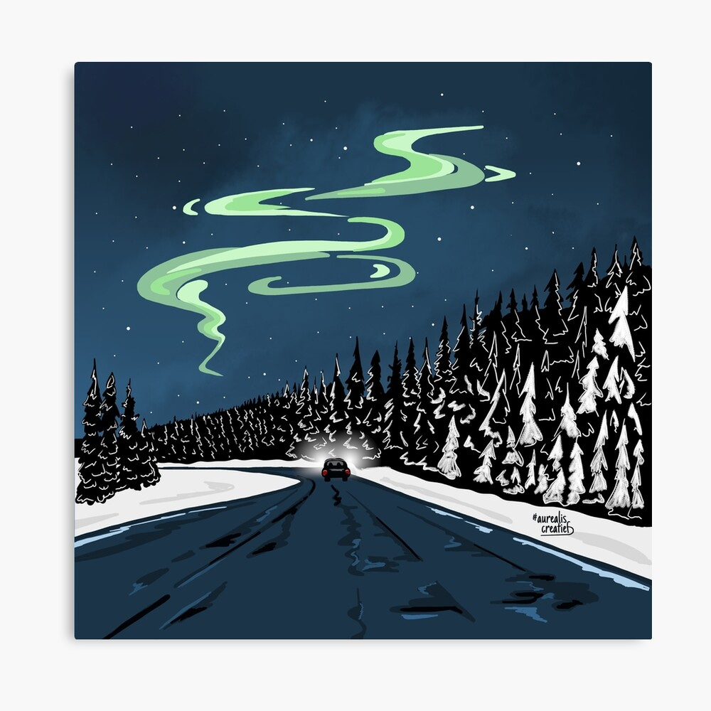 Northern-lights-Lapland-shop