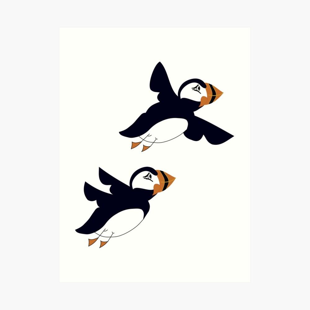 Papagaaiduikers-ijsland-Illustrator Aurealis Creatief