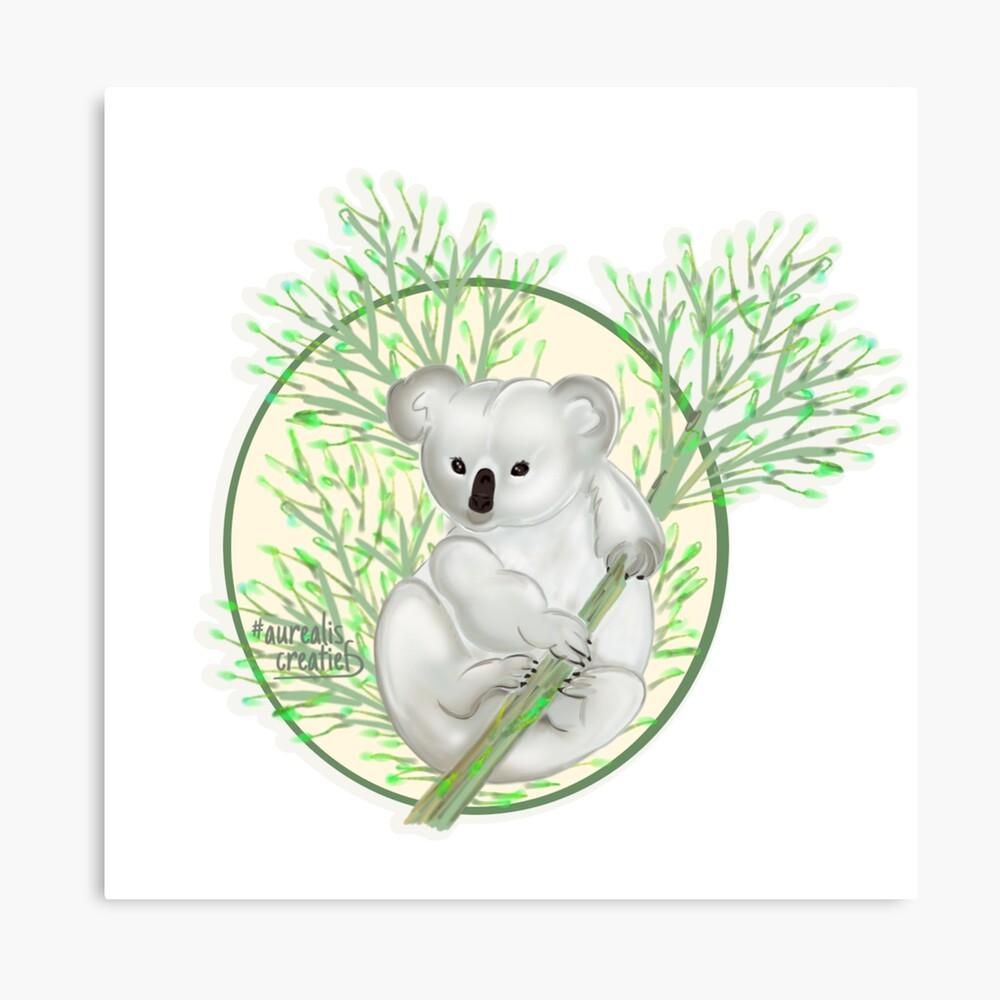 Koala- Aurealis creatief - grafische designer